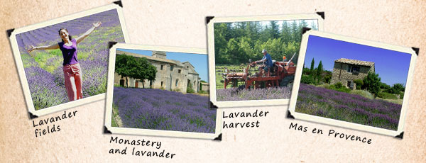 Private City Tour Provence